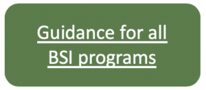 guidance for all BSI programs button
