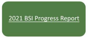 2021 BSI Progress Report